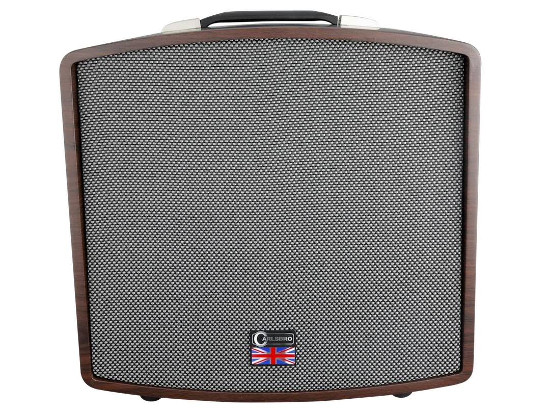 Carlsbro Stingray guitar amplifier D40