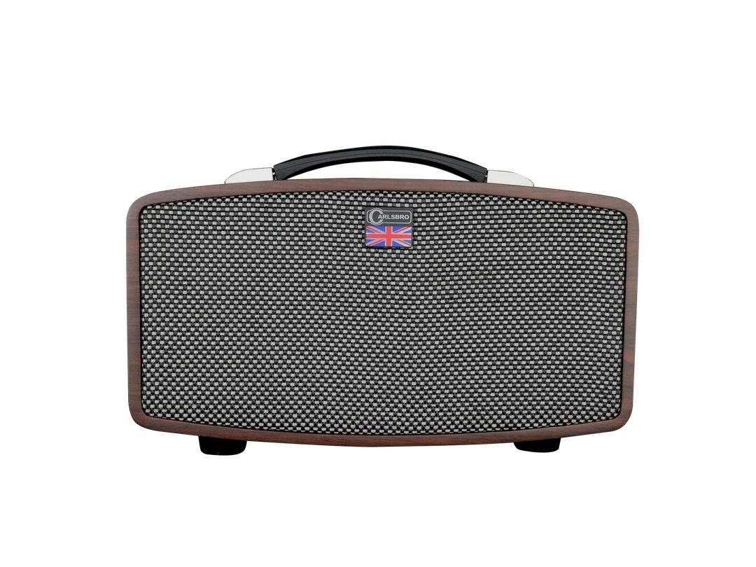 Carlsbro Stingray guitar amplifier D5 front